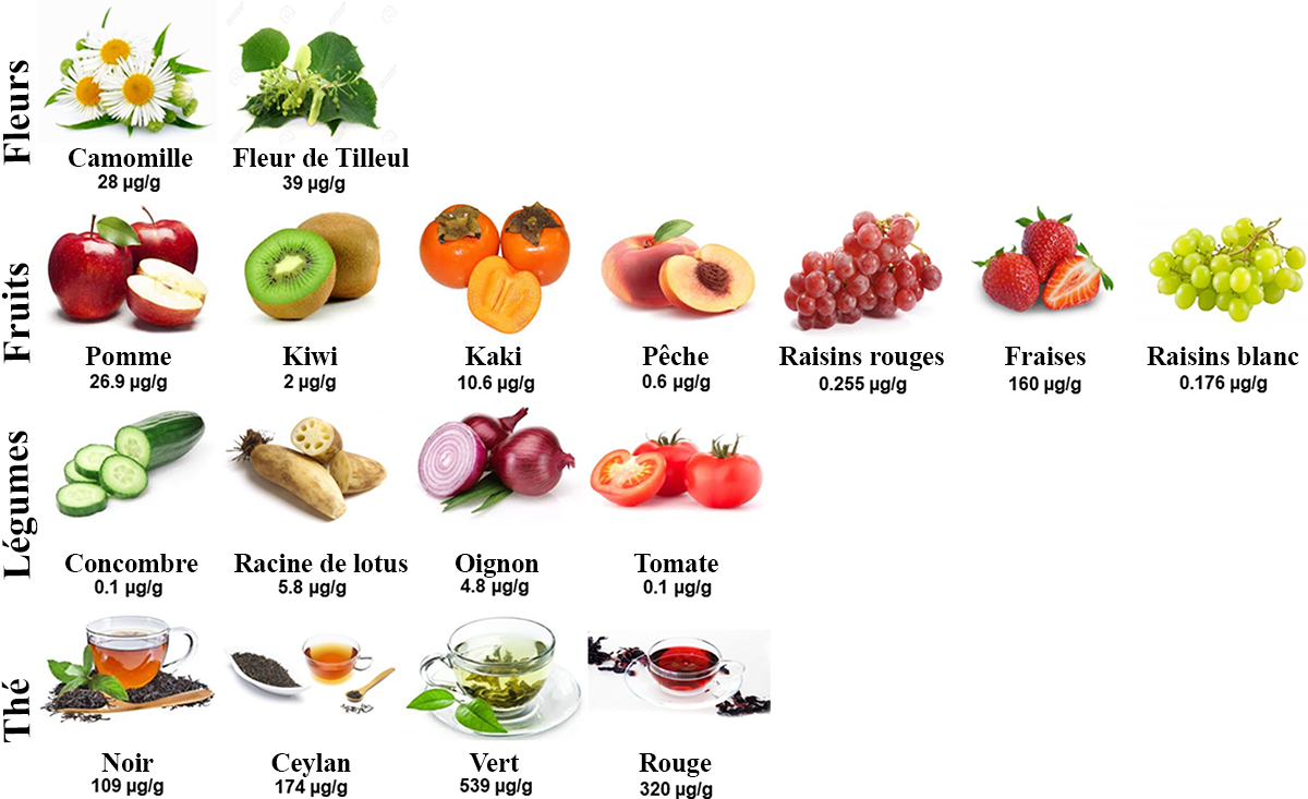 Aliments contenant de la fistéine
