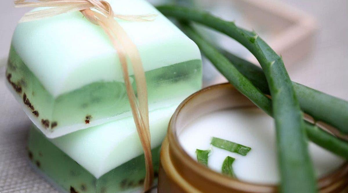 Apprenez a fabriquer du savon à l'aloe Vera pour éliminer l'acné et les rides