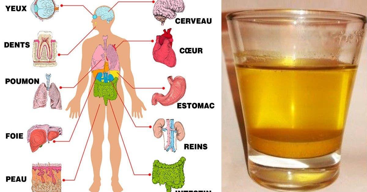 Buvez de l'eau au citron le matin