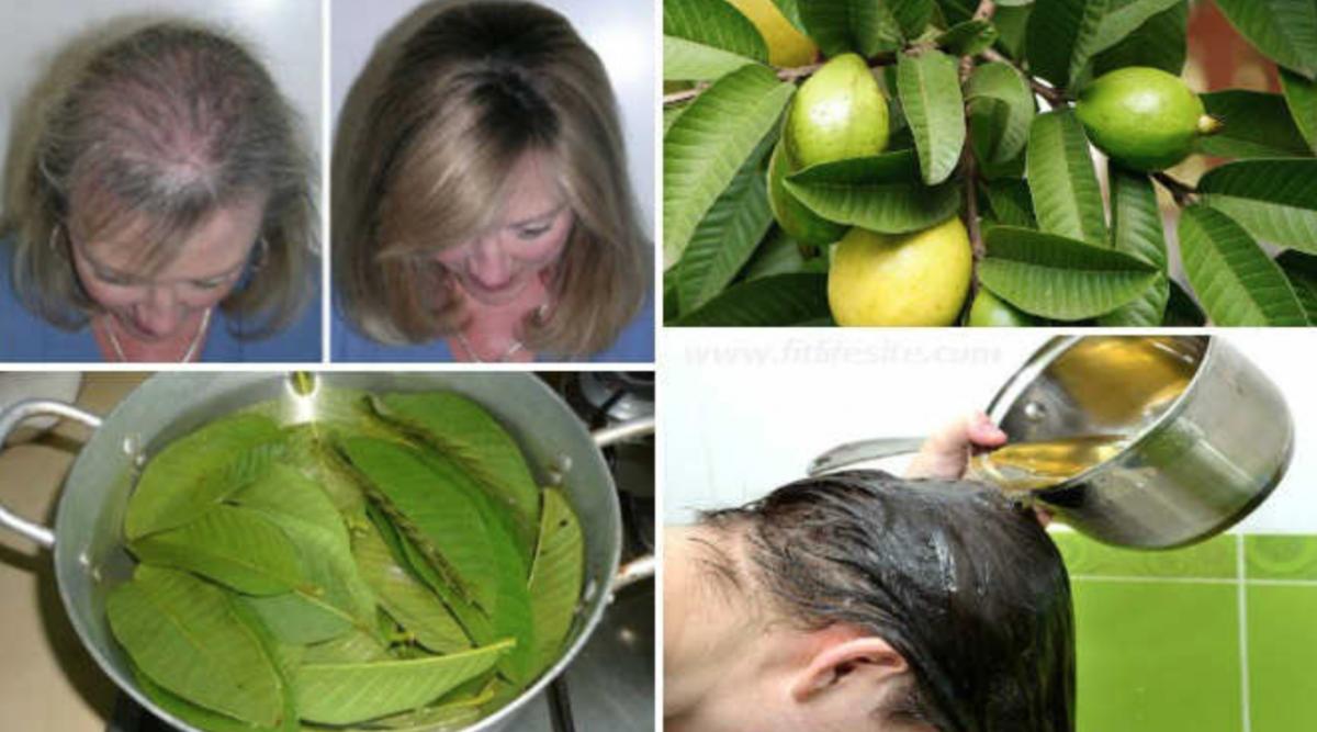 Ce fruit stoppe la chute des cheveux, protège votre cœur, vous aide à mincir et …