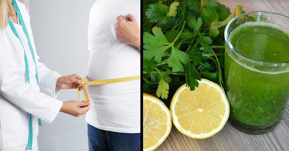 Ce nutritionniste recommande de boire cette boisson au citron : une solution parfaite pour perdre 1 kg par jour