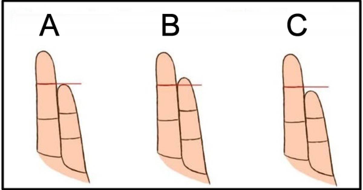 Ce que la longueur de votre auriculaire revele sur votre personnalite 1