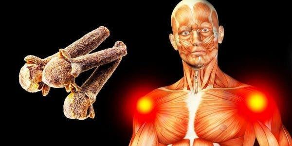 Ce qui arrive à votre corps lorsque vous consommez 2 clous de girofle par jour