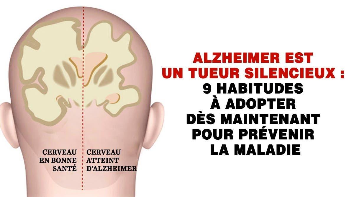 cerveau en bonne santé