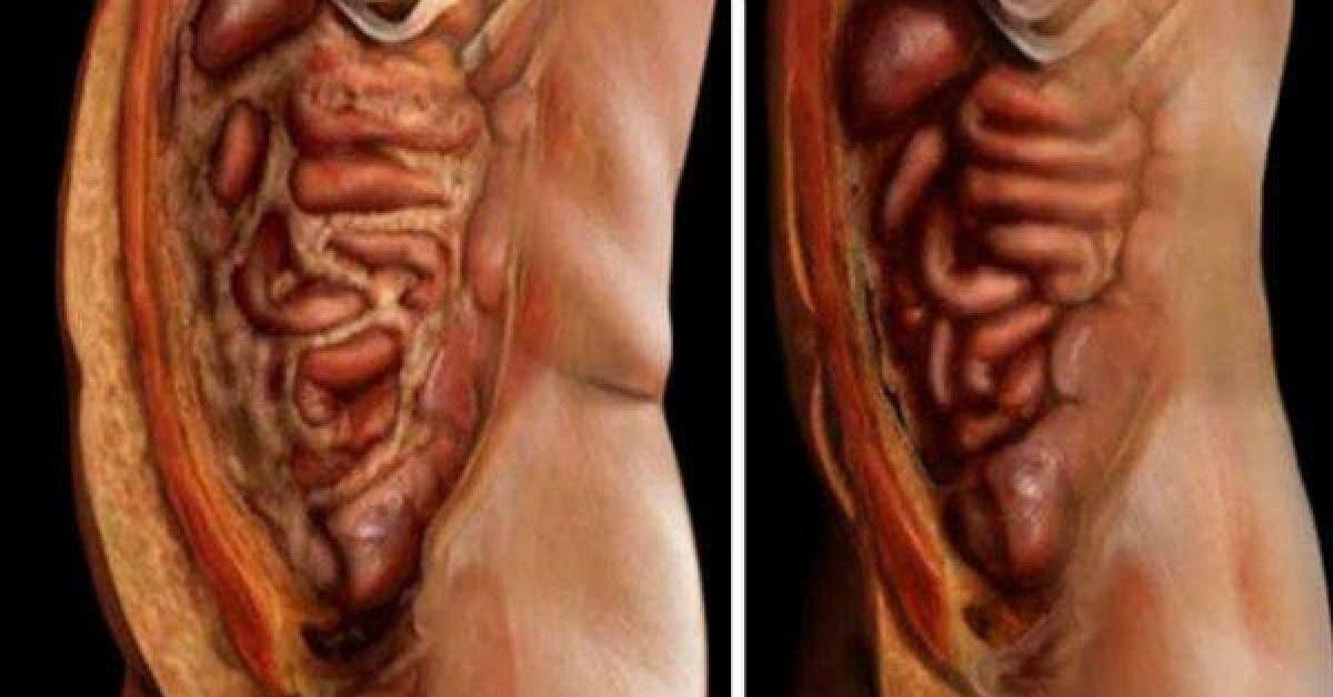 Ces 2 aliments permettent de bruler les graisses et devacuer les toxines de votre corps sans effort