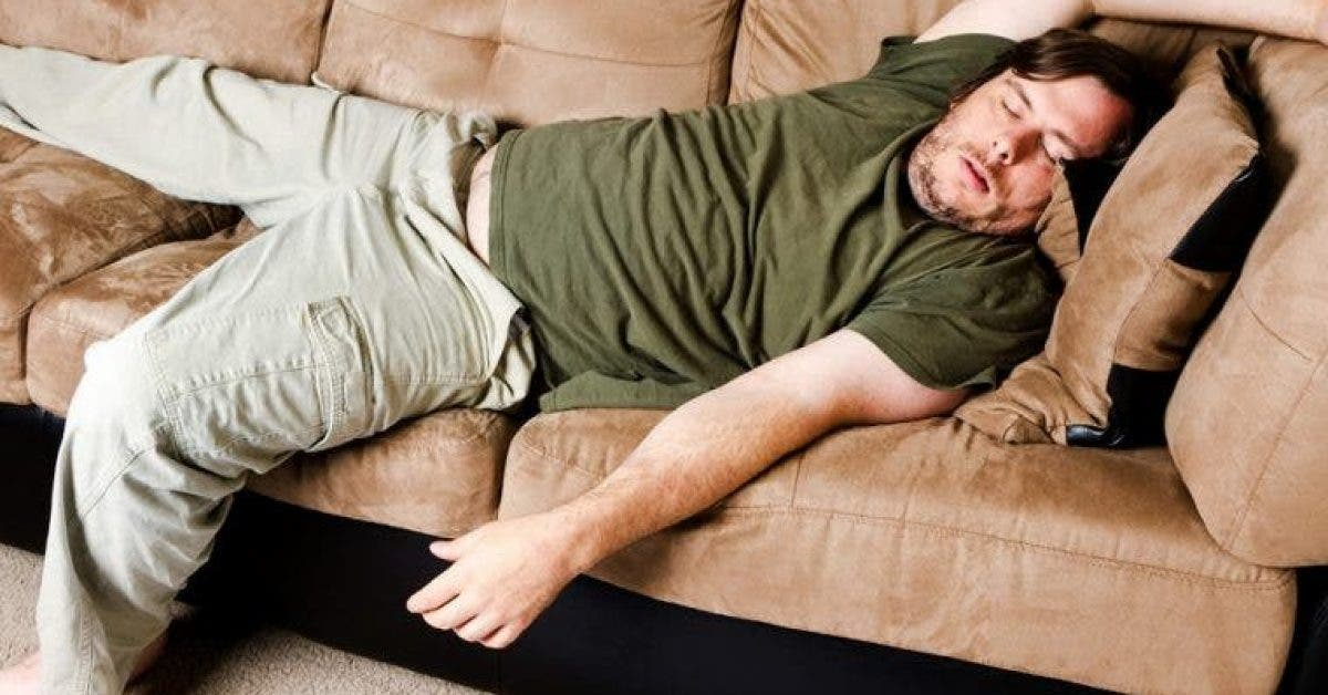 Cest prouve etre paresseux permet de vivre plus longtemps 1