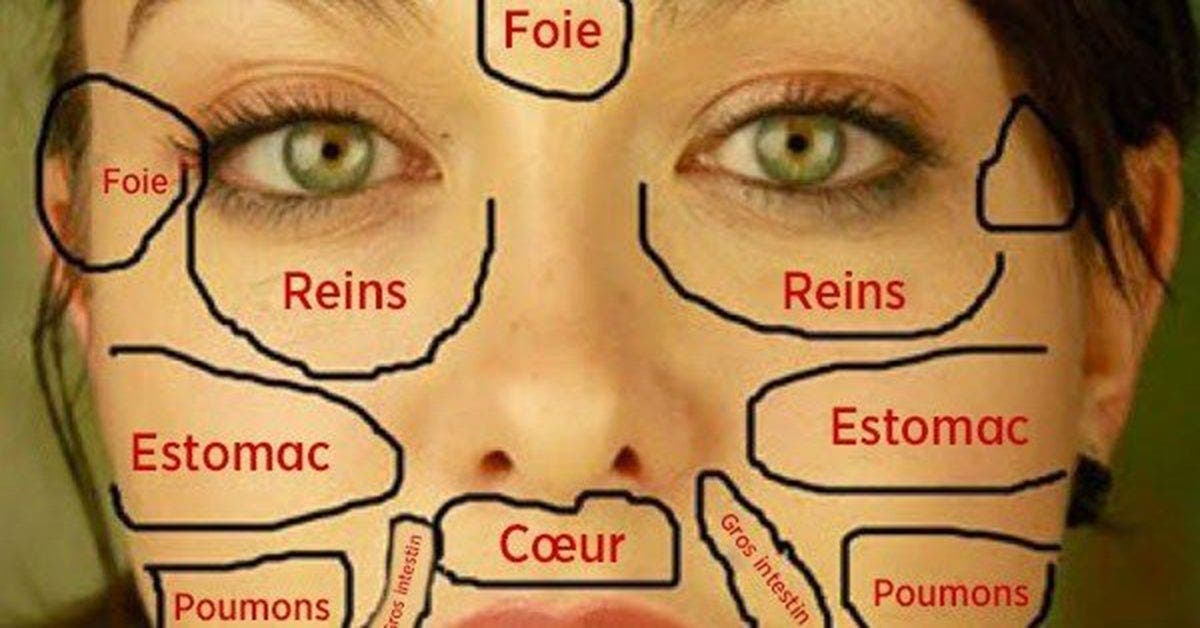 Cette carte du visage de la médecins chinois permet d'identifier quelle partie du corps est malade et comment la soigner