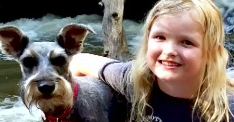 Cette intoxication tue de plus en plus de chiens pendant l'été