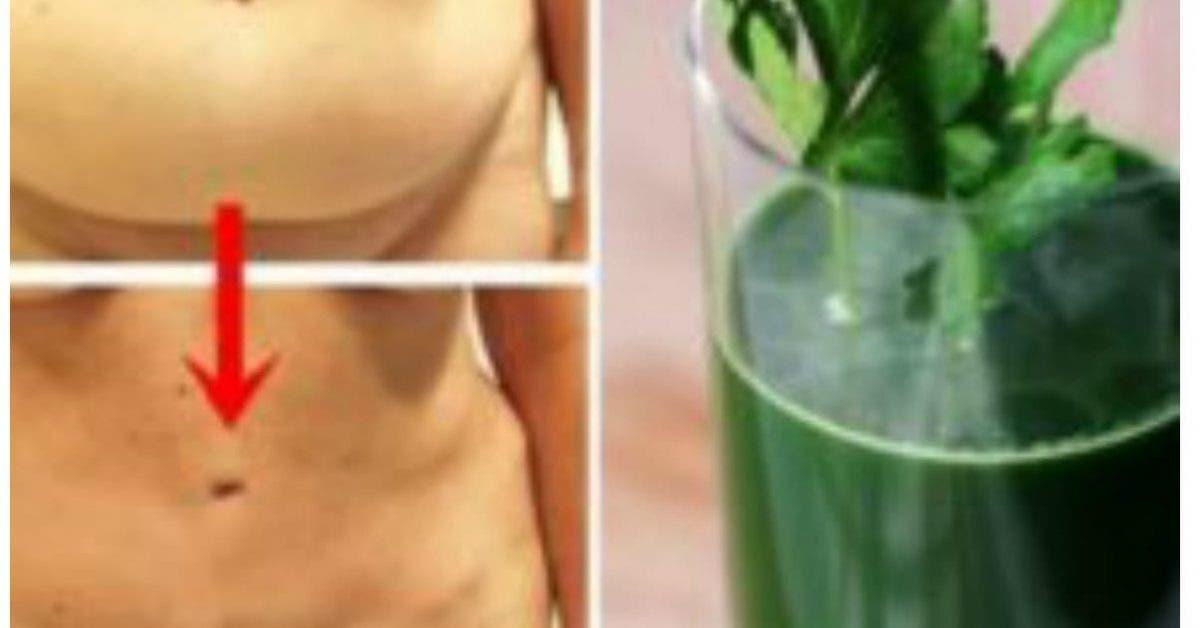 Chaque nuit avant de dormir, buvez cette boisson : elle élimine la graisse abdominale pendant votre sommeil