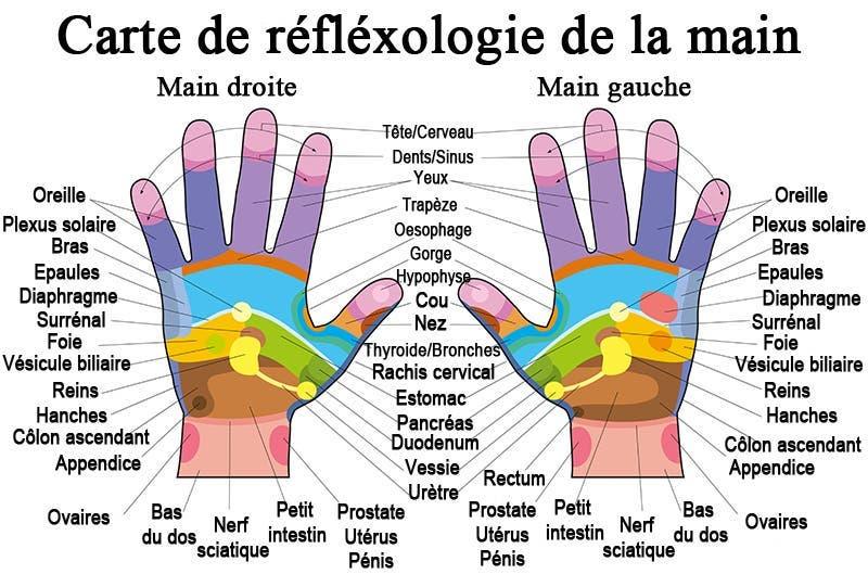 Chaque partie de la main est associée à une partie précise du corps