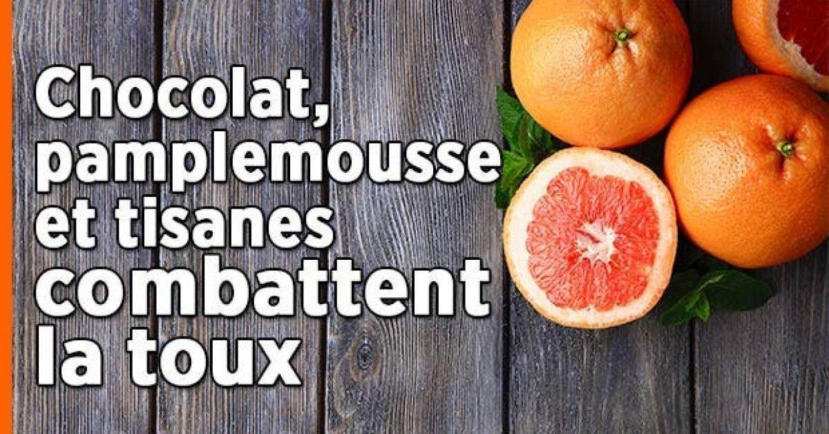 Chocolat pamplemousse tisanes toux11