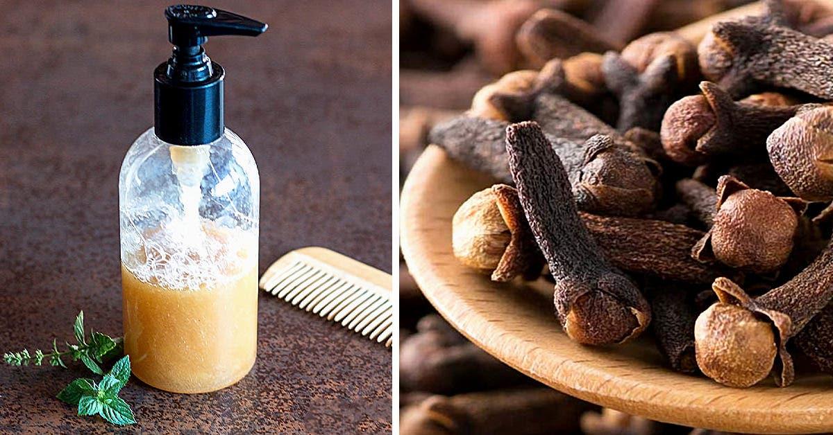 Recette : le célèbre shampoing au clou de girofle pour sublimer les cheveux