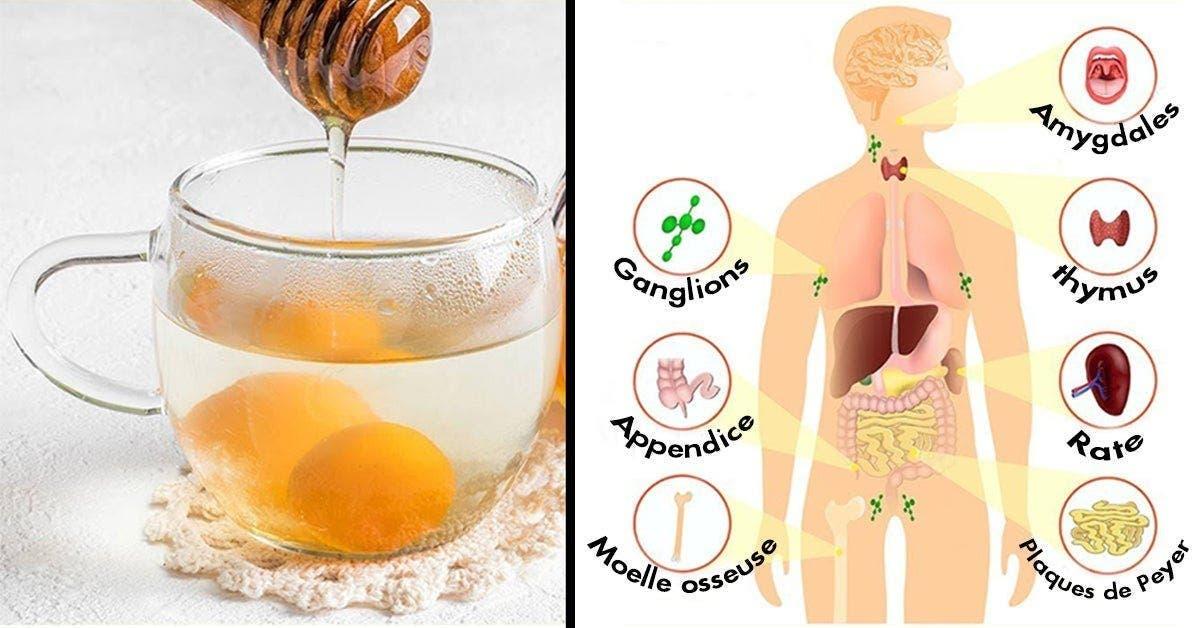 Mélangez de l'eau au miel pour réduire le cholestérol, combattre les bactéries, améliorer la digestion et bien plus encore