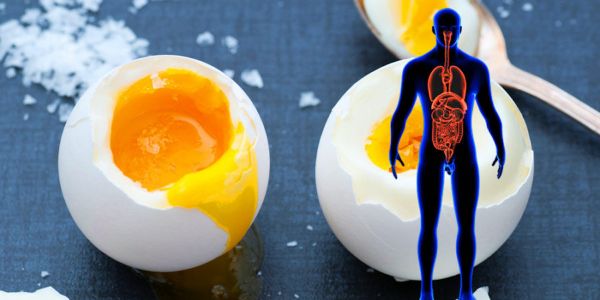 2 oeufs par jour pour renforcer vos os