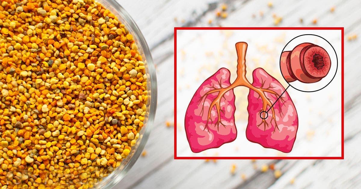 consommez une cuill re de pollen par jour pour soigner les allergies traiter les probl mes de. Black Bedroom Furniture Sets. Home Design Ideas