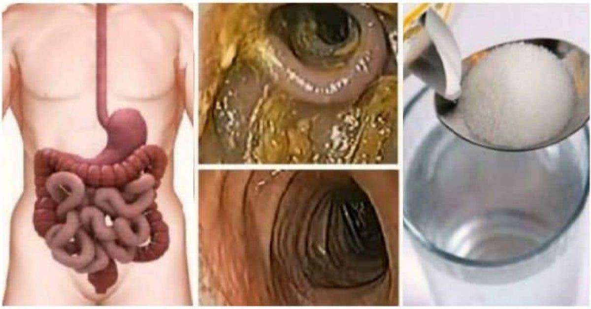 détox foie et colon