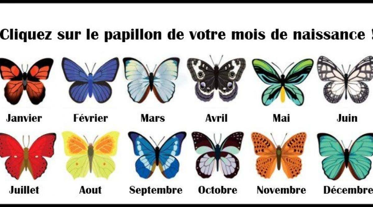 Découvrez ce que le papillon de votre mois de naissance révèle à propos de vous