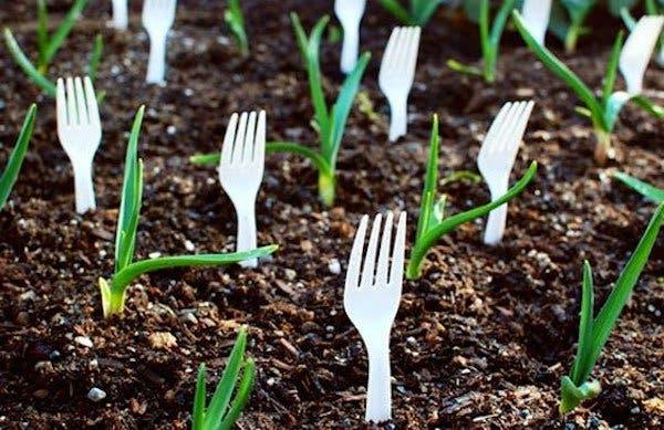 Elle plante des fourchettes dans son jardin pour une raison géniale