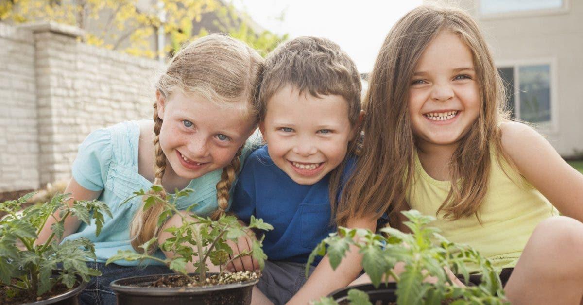 Enfant unique aine cadet ou benjamin votre place dans la fratrie revele beaucoup de choses sur votre personnalite 1