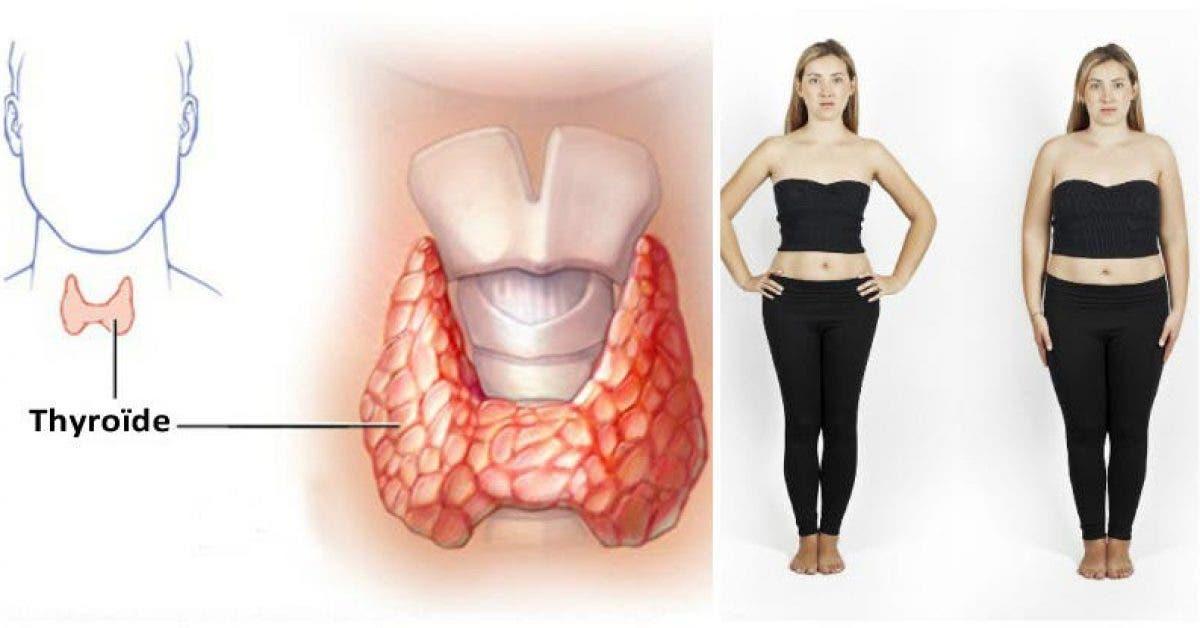 Faites fondre la graisse RAPIDEMENT trois tasses par jour vont faire un miracle pour votre ventre 1