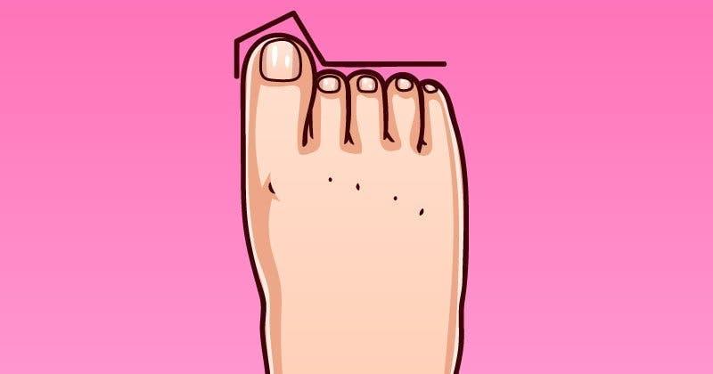formes de pieds et chacune indique un type de personnalité
