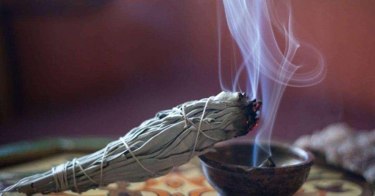 Il faudrait brûler des feuilles de sauge chez vous à la maison