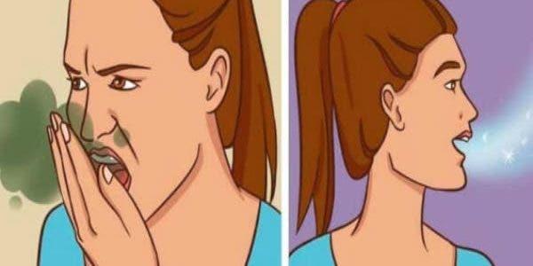 Découvrez un remède naturel et très efficace pour se débarrasser définitivement de la mauvaise haleine.