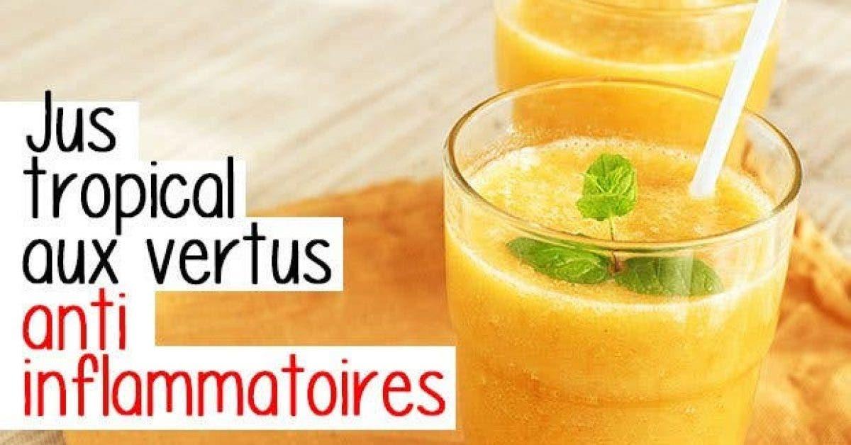 Jus tropical vertus anti inflammatoires11