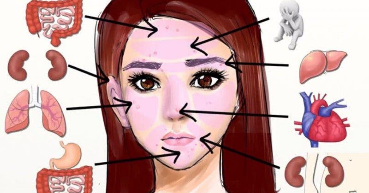 La carte du visage révèle quelle partie de votre corps est malade et comment la soigner