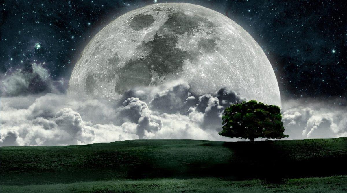 lune 12122019