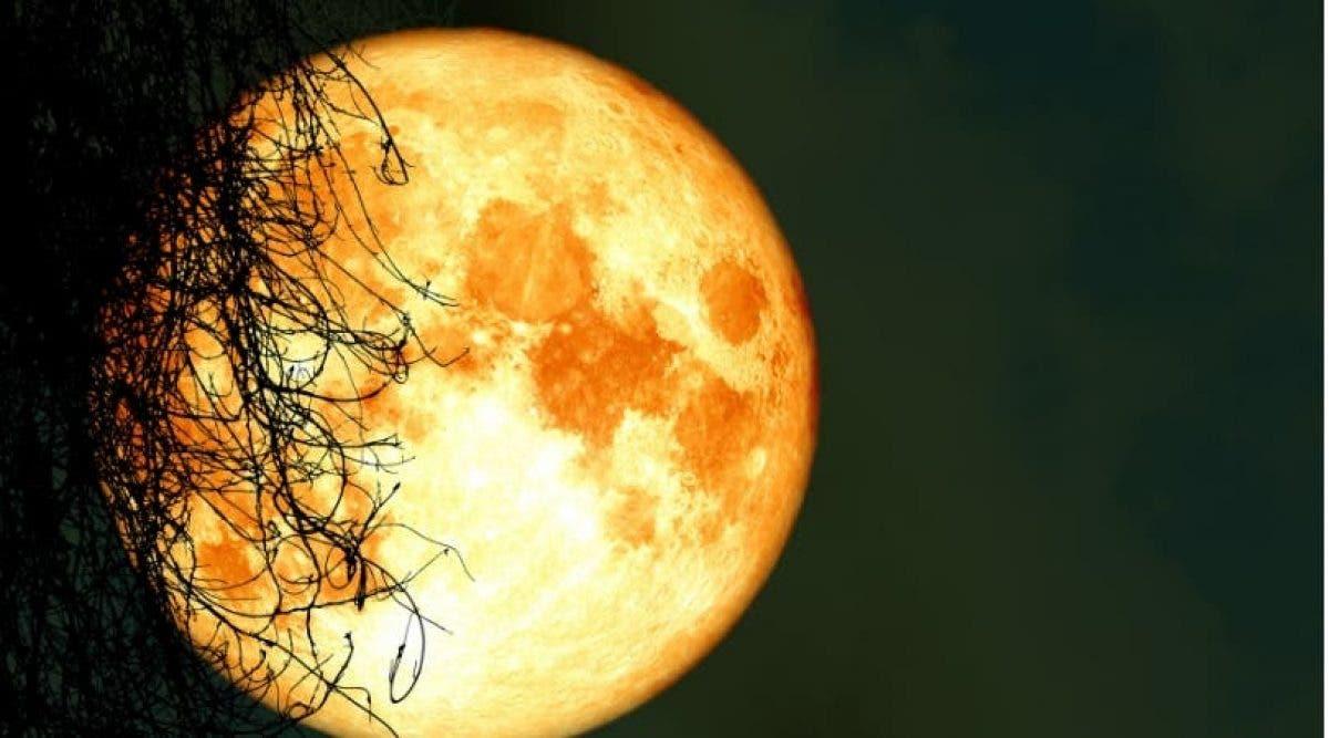 La pleine lune de ce vendredi 13 illuminera le ciel et apportera des changements sur votre signe du zodiaque