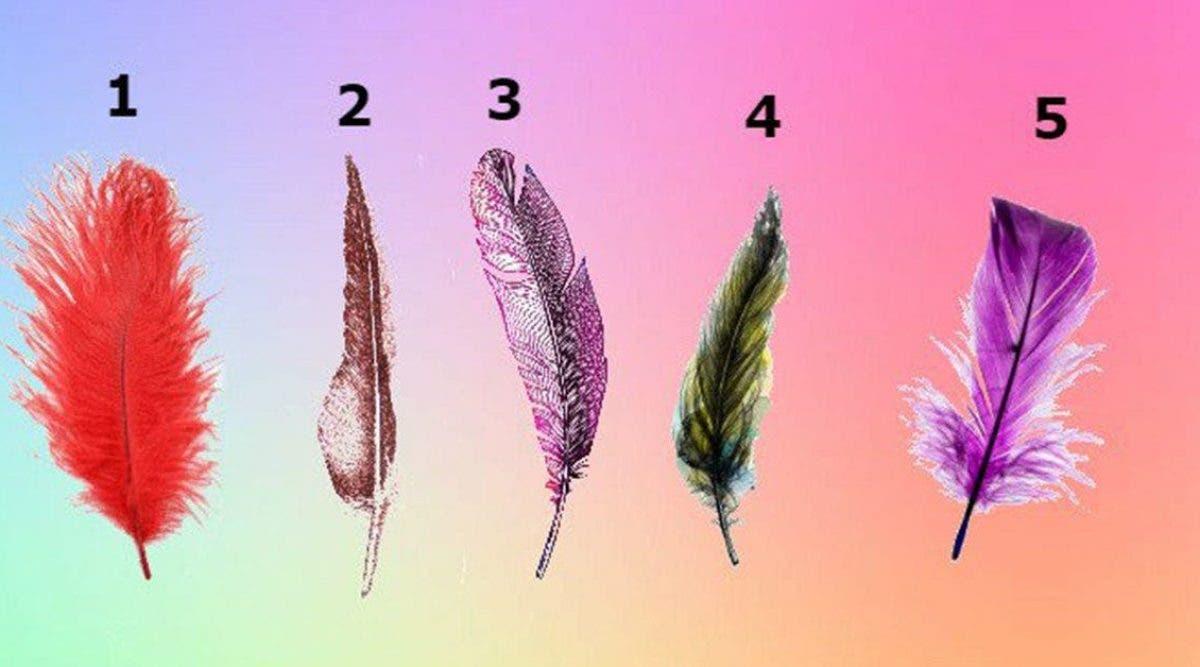 La plume que vous allez choisir va révéler de beaux secrets sur votre personnalité