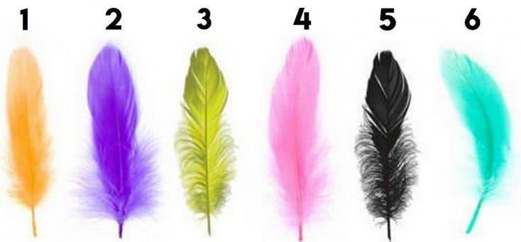 La plume que vous préférez décrit votre profond personnalité