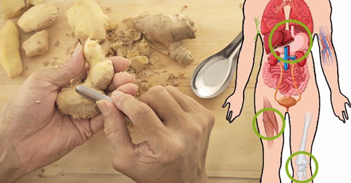 La recette du thé au gingembre qui nettoie le foie et réduit les douleurs articulaires