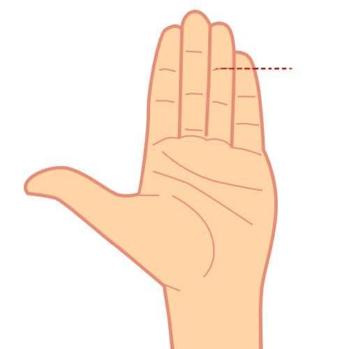 La taille de votre petit doigt révèle un secret sur vous