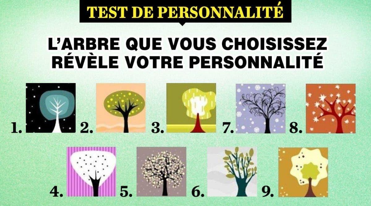 L'arbre que vous choisissez raconte des vérités sur votre personnalité