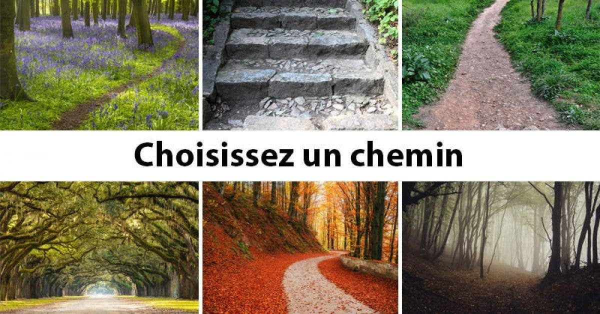 Le chemin que vous choisissez révèle votre personnalité et votre avenir