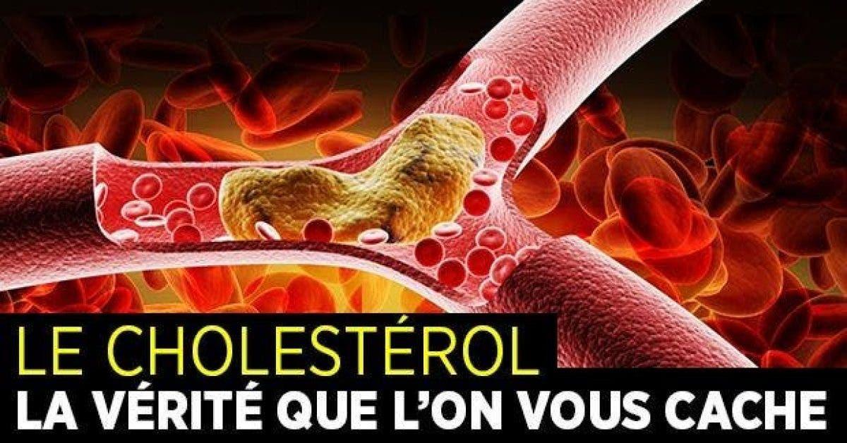 Le cholesterol La vU00e9ritU00e9 que lU2019on vous cache 1