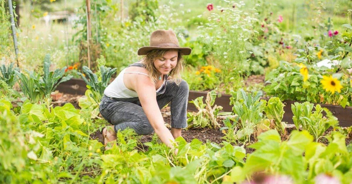 Le jardinage est un antidepresseur naturel dapres les chercheurs 1
