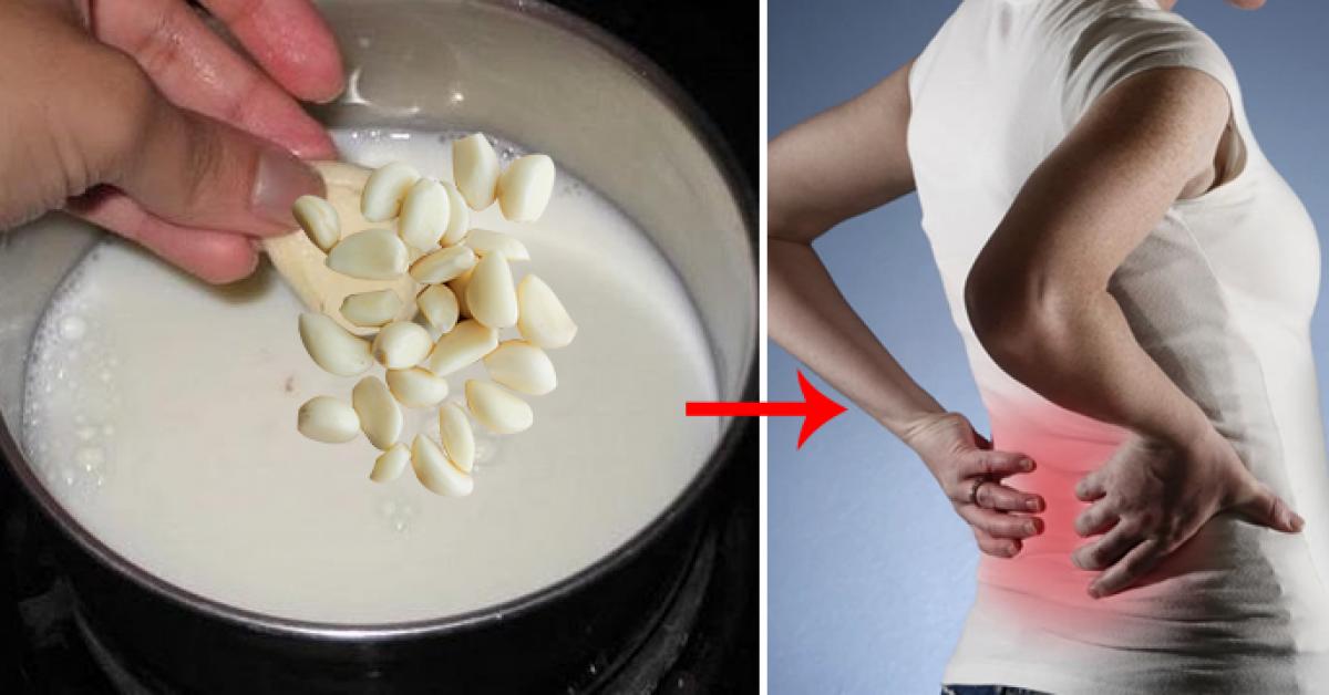 Le lait a lail est un excellent remede fait maison contre la sciatique et les maux de dos 1