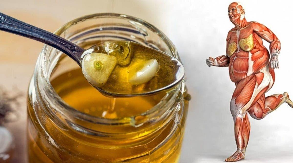 Le miel est un médicament naturel