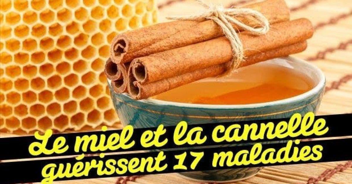 Le miel et la cannelle guerissent 17 maladies11