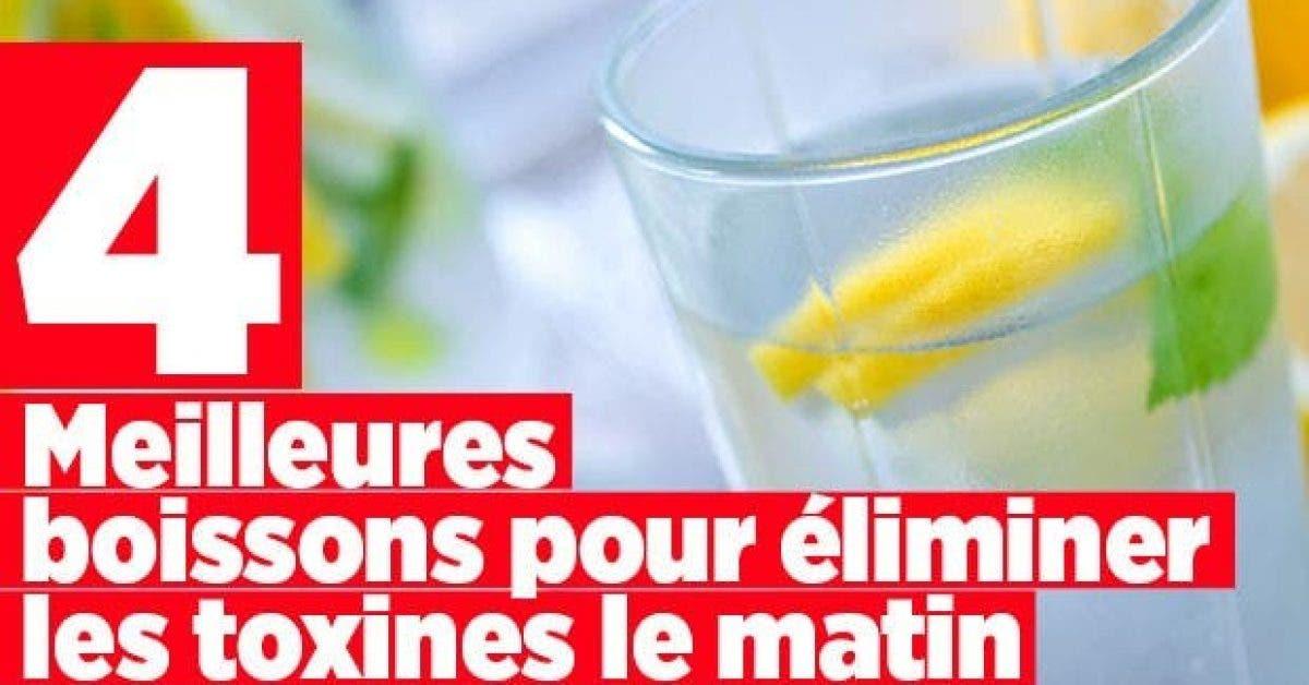 Les 4 meilleures boissons eliminer les toxinesmatin11