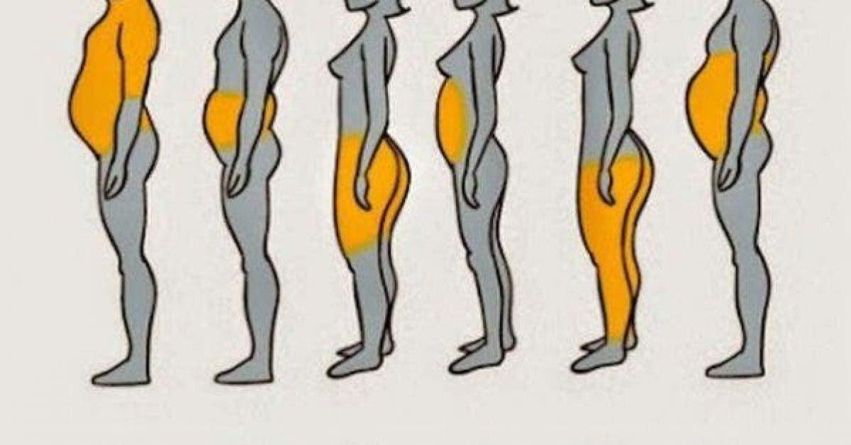Les 6 types de graisses corporelles et comment s'en débarrasser