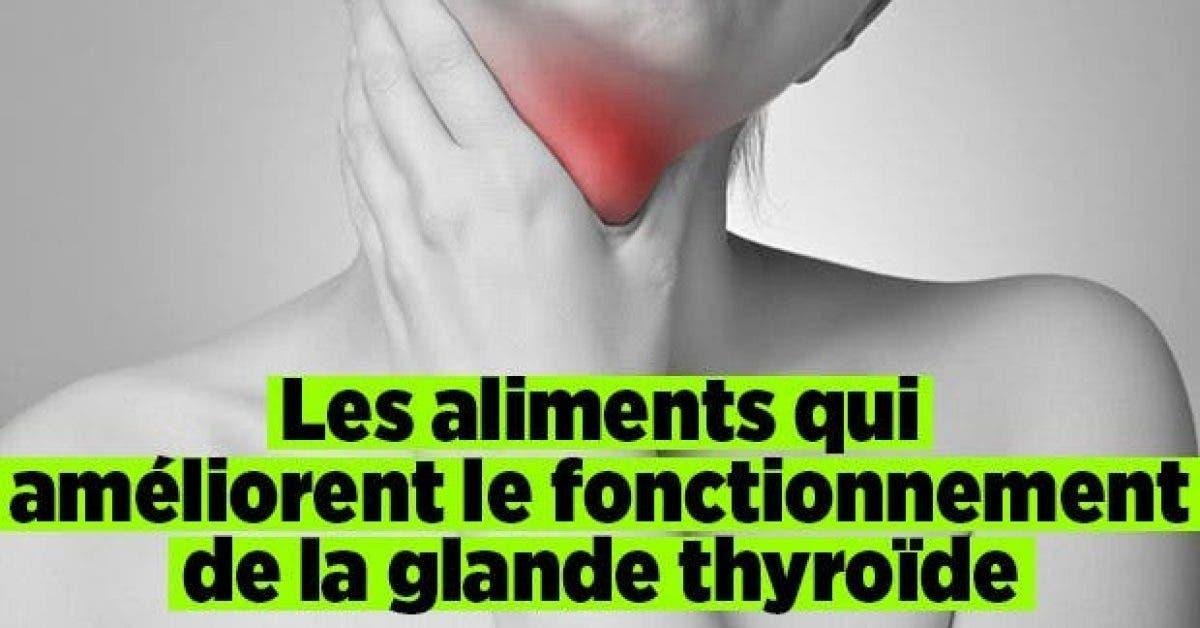Les aliments qui ameliorent fonctionnement de la glande thyroide11