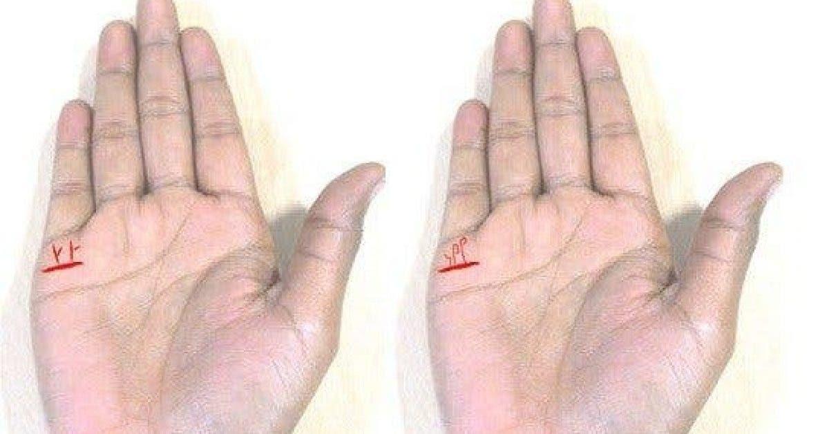 Les lignes de votre main vous revelent combien denfants vous aurez et leur sexe