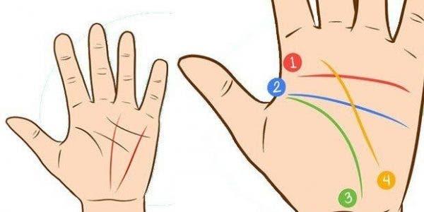 Les lignes sur votre main peuvent révéler des secrets sur vous et votre futur