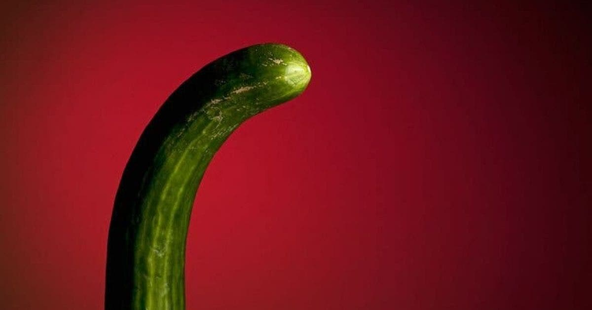 Les médecins affirment que le pénis se transforme en été