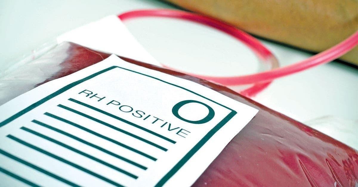 Les personnes du groupe sanguin O sont spéciales