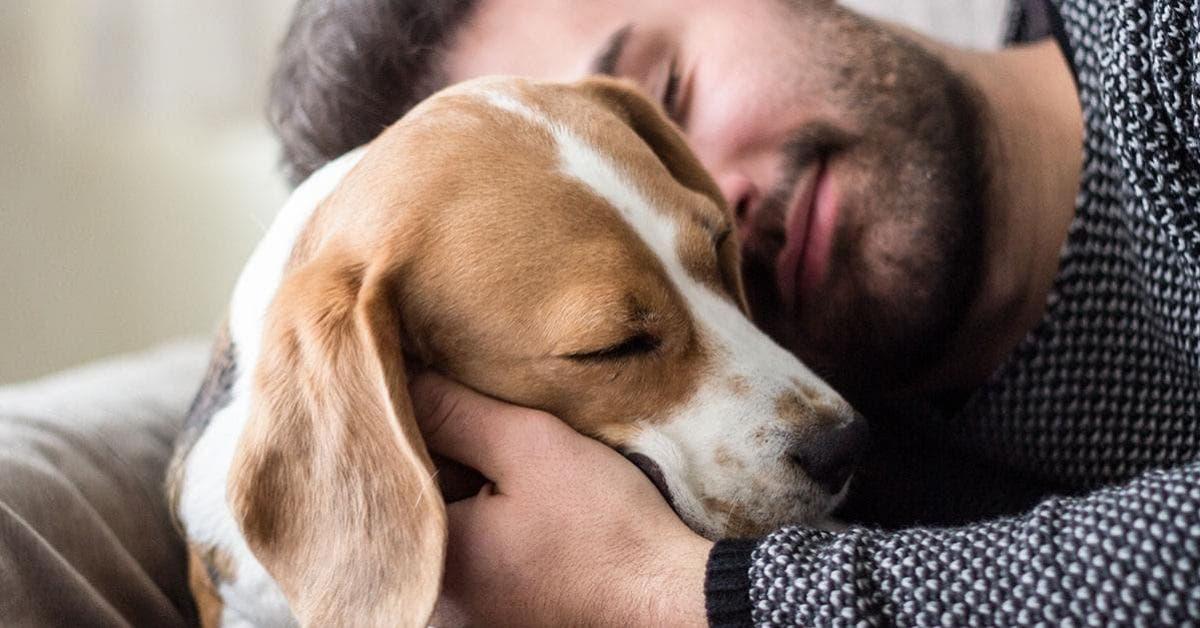 Les personnes qui parlent à leurs animaux de compagnie sont très spéciales d'après une étude
